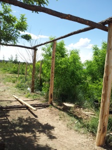 Tying posts together with support poles